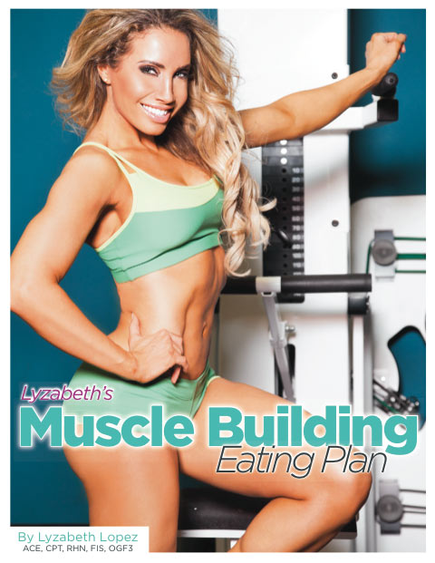 muscle-building-plan